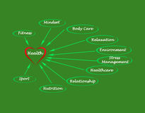 Diagram of health Royalty Free Stock Photography