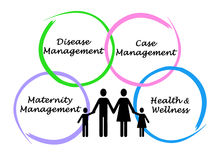 Diagram of Health management solution Stock Photos
