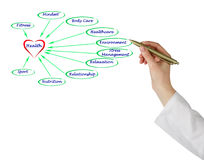 Diagram of health. Presenting Important components of health royalty free stock image