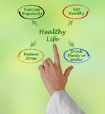 Diagram of healthy life Stock Images