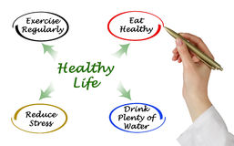 Diagram of healthy life Royalty Free Stock Photo