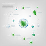 Diagram Infographics Bio. The illustration of bio infographics on a light background. Ecology Concept Royalty Free Stock Image