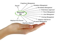 Diagram of Integrated HR Stock Photos
