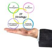 Diagram of IP strategies Royalty Free Stock Image