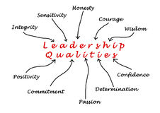 Diagram of leadership qualities royalty free illustration