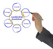 Diagram of leadership qualities Stock Photo