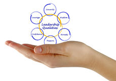 Diagram of leadership qualities stock photography