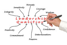 Diagram of leadership qualities Stock Images