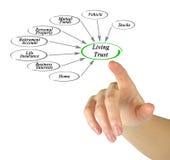 Diagram of Living Trust. Presenting Diagram of Living Trust Stock Images