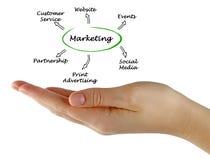 Diagram marketing obraz stock