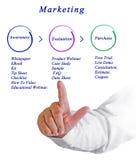 Diagram marketing Obrazy Stock