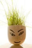 diagram med gräs på hans huvud arkivfoton