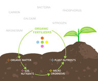 Diagram of Nutrients in Organic Fertilizers. Vector illustration flat design Royalty Free Stock Image