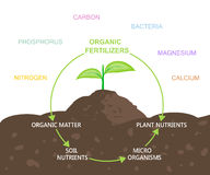 Diagram of Nutrients in Organic Fertilizers. Vector illustration flat design Royalty Free Stock Photos