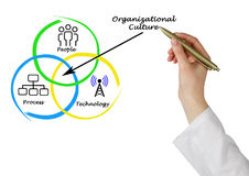 Diagram of Organizational Culture. Presenting diagram of Organizational Culture Royalty Free Stock Photos
