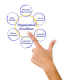 Diagram of Organizational Excellence. Presenting diagram of Organizational Excellence Royalty Free Stock Photos