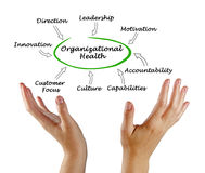 Diagram of Organizational Health. Presenting Diagram of Organizational Health Royalty Free Stock Photo