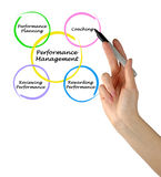 Diagram of Performance Management Royalty Free Stock Image