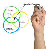 Diagram of product success Royalty Free Stock Images
