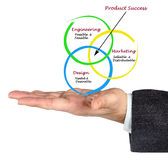 Diagram of product success Royalty Free Stock Image