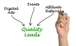 Diagram of Quality Leads. Presenting diagram of  Quality Leads Stock Photo