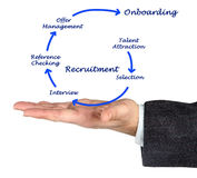 Diagram of recruitment process. Presenting Diagram of recruitment process Royalty Free Stock Image