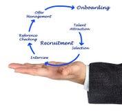 Diagram rekrutacja proces Obraz Royalty Free