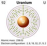 Diagram representation of the element uranium. Illustration Stock Photography