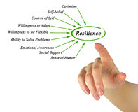 Diagram of Resilience. Diagram of factors of Resilience Royalty Free Stock Photography