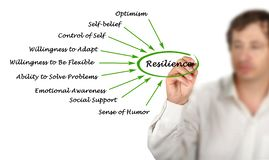 Diagram of Resilience. Man presenting Diagram of Resilience Royalty Free Stock Image