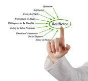 Diagram of Resilience. Presenting different sources of Resilience Stock Images