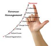 Diagram of Revenue Management. Presenting Diagram of Revenue Management stock images