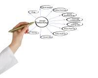 Diagram of social networking. Presenting Diagram of social networking stock photos