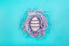 Diagram som hand-målas i linjen ägg i dekorativt rede på blå pastellfärgad bakgrund arkivbild