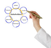 Diagram of stakeholders. Presenting different kinds of stakeholders royalty free stock photos
