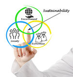 Diagram of sustainability Royalty Free Stock Photos