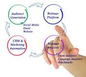 Diagram van de marketing van cyclus stock foto's