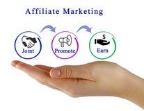 diagram van Filiaal marketing Royalty-vrije Stock Afbeeldingen