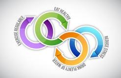 Diagram van gezonde het levenscyclus Royalty-vrije Stock Foto
