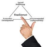 Diagram van veerkracht Stock Afbeeldingen