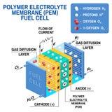 Diagrama da célula combustível Ilustração do vetor ilustração do vetor