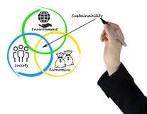Diagrama da sustentabilidade foto de stock royalty free