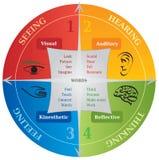 Diagrama de aprendizaje de 4 estilos de la comunicación - el entrenar de la vida - NLP Imagen de archivo