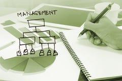 Diagrama de la gestión de negocio Fotos de archivo libres de regalías