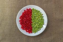 Diagrama de la pasa roja y de guisantes verdes Fotografía de archivo libre de regalías