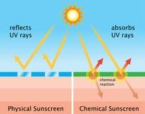 Diagrama de la protección solar química y de la protección solar física Imágenes de archivo libres de regalías