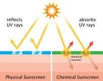 Diagrama de la protección solar química y de la protección solar física Imagenes de archivo