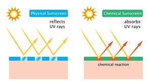 Diagrama de la protección solar química y de la protección solar física Fotografía de archivo libre de regalías