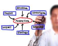 Diagrama do mercado do negócio Fotografia de Stock