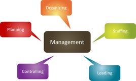 Diagrama do negócio da função de gerência Imagem de Stock Royalty Free